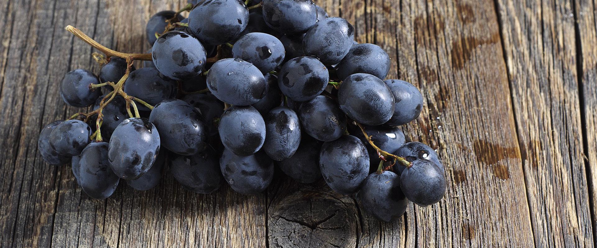 I nostri frutti